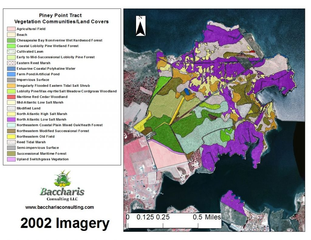 2002 Piney Point Tract Vegetation Community/Land Cover Map