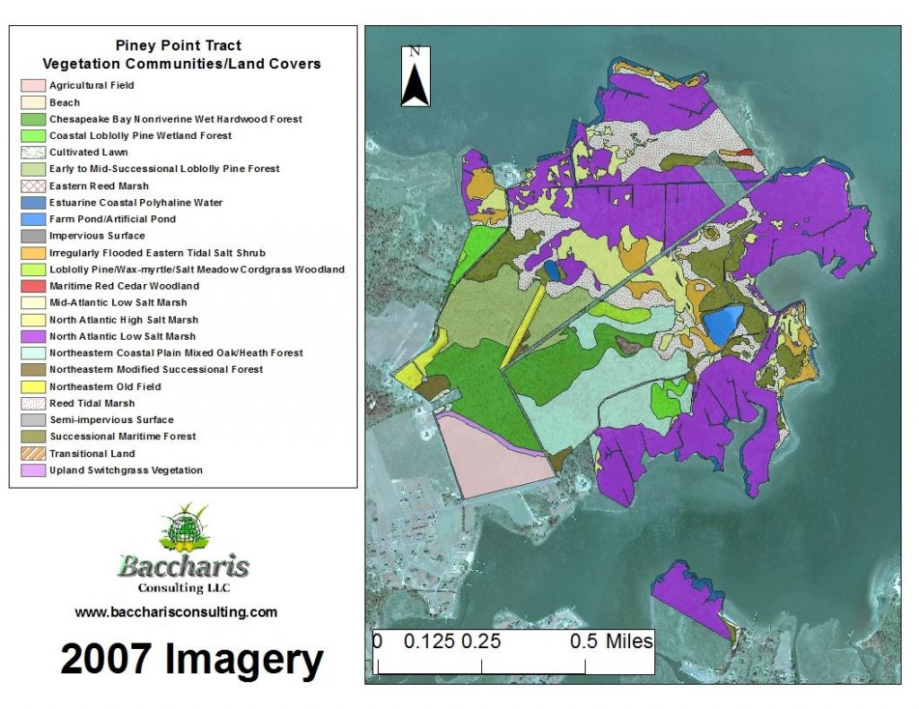 2007 Vegetation Community/Land Cover Map of the Piney Point Tract